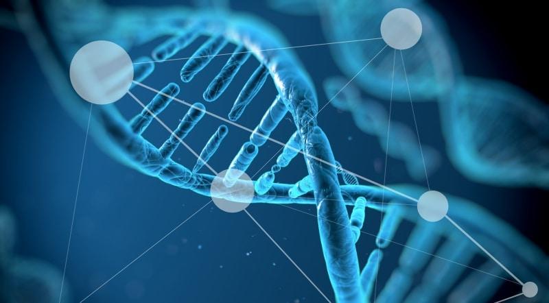 25 de Abril – Día mundial del ADN ¿Qué es el ADN y qué es un test genético?